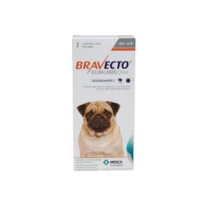 Bravecto 10 - 22 lbs ( 6 month Supply )