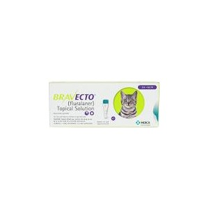 (i) Bravecto Cat Small 2.6-6.2lbs